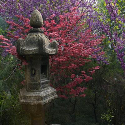 Пагода Дикий Гусь в Сиане