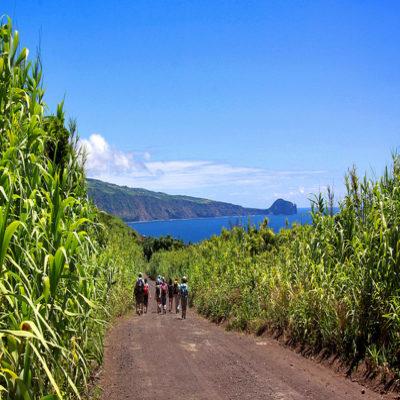 Треккинг вдоль озер острова Пику