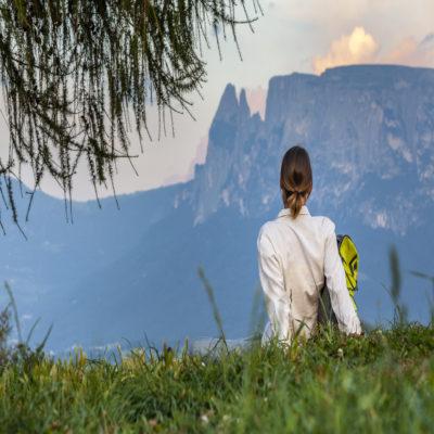 Бескрайние альпийские луга