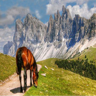 Валь Гардена 2 Тироль Италия