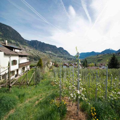 Наши апартаменты в Южном Тироле Италия