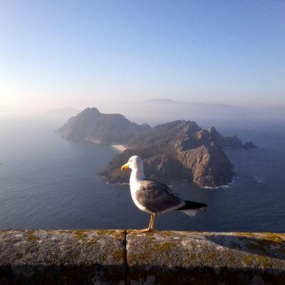 Острова Сиес Испания Штандарт