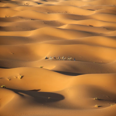 Пустыня Сахара Марокко