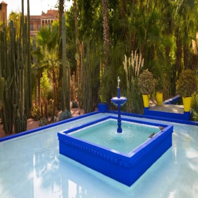 Сад Мажореля Марракеш Марокко