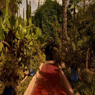 Сад Мажореля Марракеш 1 Марокко