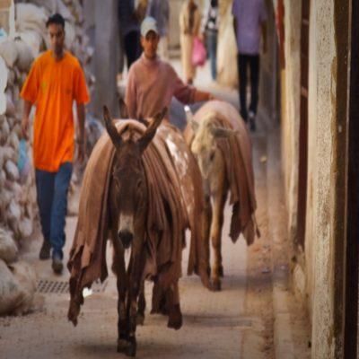 Фес Марокко 2