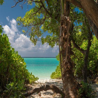 Дикий пляж Мальдивы