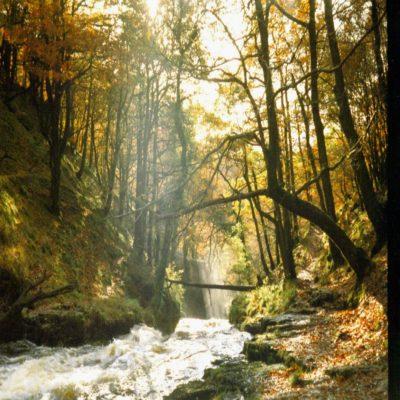 Национальный парк Брекон Биконз Уэльс Великобритания