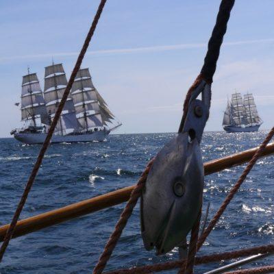 Регата больших парусников Руан Франция