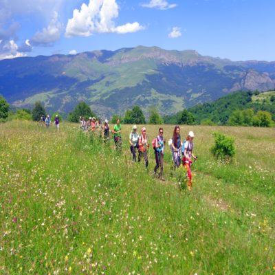 Трекинг по горным тропам Армения