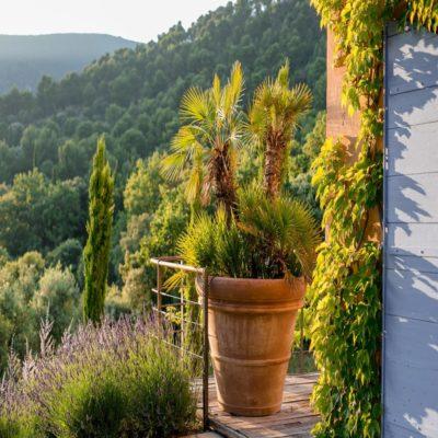 Вид на холмы Прованс Франция