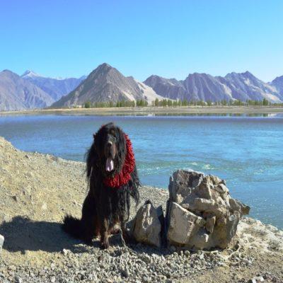 По дороге из Шигадзе в Лхасу Тибет