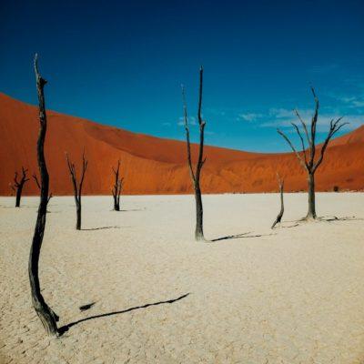 Пустыня Намиб Намибия