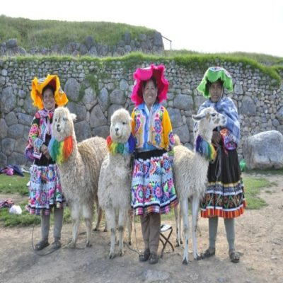 для оформления Перуанки Yolanda Coervers Pixabay
