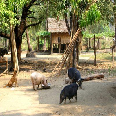 Штат Чин Мьянма