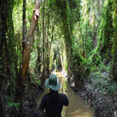 Xeo Quyt Forest Вьетнам