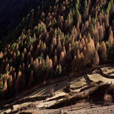 Трекинг вокруг Манаслу Непал