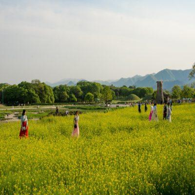 Кёнджу Корея