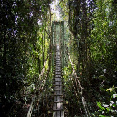 Национальный парк Мулу Борнео Малайзия