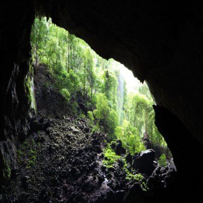 Оленья пещера в парке Мулу Борнео Малайзия