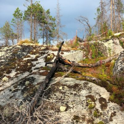 Скалы Белое море Россия
