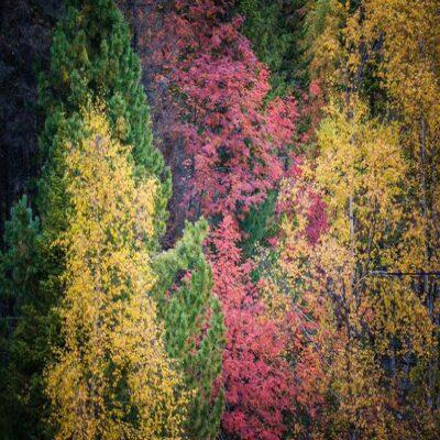 Краски байкальской осени Россия