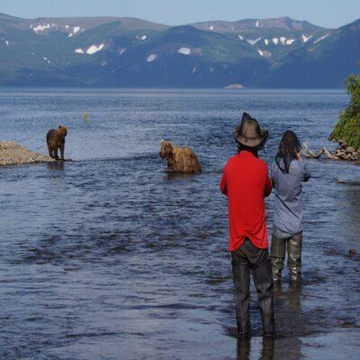Медведи на Курильском озере Камчатка Россия
