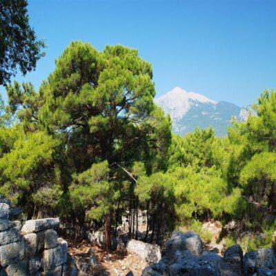 Фаселис и гора Олимпос Турция