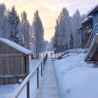 Туристический комплекс в парке «Голубино» Архангельская область
