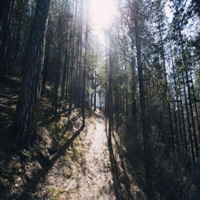 Прибайкальский национальный парк Россия