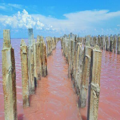 Розовое озеро Сасык Сиваш Крым
