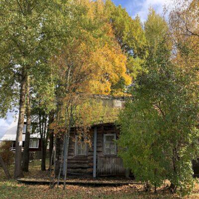 Золотая осень Пушкинские горы Пушгоры