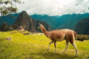 5758Путешествие к центру Земли, маршрут №1: Перу – Эквадор – Колумбия
