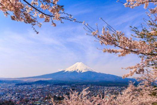 Чиптрип-экспедиция по Японии «Вслед за сакурой»
