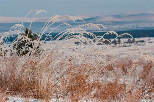 Настоящая зима на Байкале