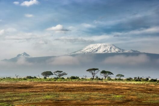 Африканские приключения в Танзании: восхождение на Килиманджаро
