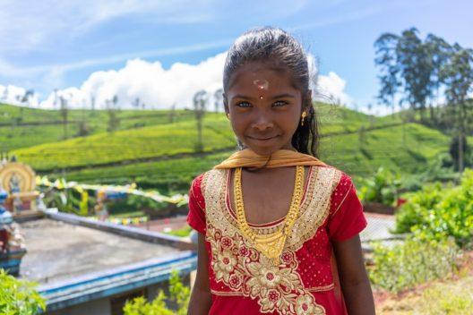 Чиптрип-экспедиция: Золотое кольцо Шри-Ланки