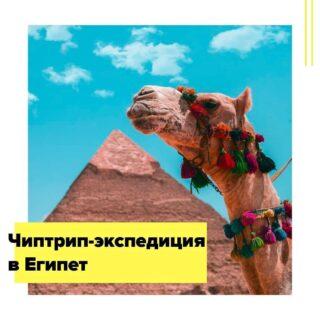 Хотите почувствовать себя героем приключенческого романа начала прошлого века? Присоединяйтесь к нашей экспедиции в Египет и прикоснитесь к одной из величайших цивилизаций в истории человечества. В этой самой известной и самой загадочной стране Африки время как-будто остановилось…  За время нашего путешествия мы увидим две пустыни – Белую и Черную, побываем в двух крупнейших и колоритнейших городах страны – Каире и Александрии, на двух побережьях – Красного и Средиземного моря, посетим древнейшие грандиозные храмы и знаменитые пирамиды, история которых насчитывает тысячелетия, проплывем по великому Нилу, насладимся закатом на палубе 5* круизного лайнера, а напоследок отдохнем и расслабимся на берегу моря с традиционным «все включено».  Полный маршрут (с пустыней): Каир – Сахара – Каир – Александрия – ночной поезд – 5* круиз из Асуана в Луксор – Хургада Старт 3 июня на 12 ночей. Стоимость участия – 1249 €  Короткий маршрут(без пустыни): Каир – Александрия – ночной поезд – 5* круиз из Асуана в Луксор – Хургада Старт 5 июня на 10 ночей. Стоимость участия – 1090 €  В стоимость включено: • все трансферы; • ж/д билет Каир – Асуан в 2-местное спальное купе, легкий перекус; • 2-местное размещение: отель 3+* в Каире, 5* лайнер из Асуана в Луксор, отель 5* в Хургаде; • завтраки во всех отелях; • завтрак, обед и ужин на круизном корабле 5* (без напитков); • все включено в Хургаде; • 2-дневная экскурсию в пустыню (для Полного маршрута): все переезды, завтрак, 2 обеда, ужин, джип-сафари, ночь в отеле 3*, входные билеты по программе; • поездка к пирамидам Гизы и Сфинксу с англоговорящим гидом; • входной билет на территорию пирамид; • поездка на кораблике по Нилу (Каир); • однодневная экскурсия на минибасе в Александрию с англоговорящим гидом; • экскурсии с англоговорящим гидом по Асуану, Луксору, Эдфу, Ком-Омбо, Абу-Симбелу, включая входные билеты по программе; • русскоговорящий сопровождающий по всему маршруту.  Дополнительно оплачиваются: • международный перелет – от 299 €; • в