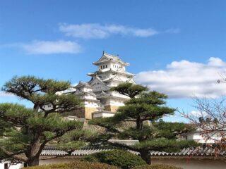 Япония — последняя страна в мире, во главе которой, пусть и формально, стоит настоящий император. Удвивительно то, что японская императорская династия никогда не прерывалась, правящий ныне император Акихито — 125 в династии. Он является прямым потомком первого императора Дзимму, основавшего Японию в 711 году до нашей эры.  Имперская история отпечаталась в архитектуре страны. В Японии практически в первозданном виде сохранилось большое количество древних замков и дворцов.  На фото Замок Химэдзи — один из древнейших сохранившихся замков, дата его основания — 1346 год.  Фото сделано участницей октябрьский Чиптрип-экспедиции. Неделю назад ребята вернулись домой и теперь разбирают фотографии и впечатления. А мы с радостью делимся с вами.  #япония #дворцыяпонии #cheaptripexpedition #Химэдзи #кудаменяпослалчиптрип